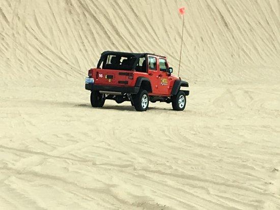 Mears, MI: Dunes
