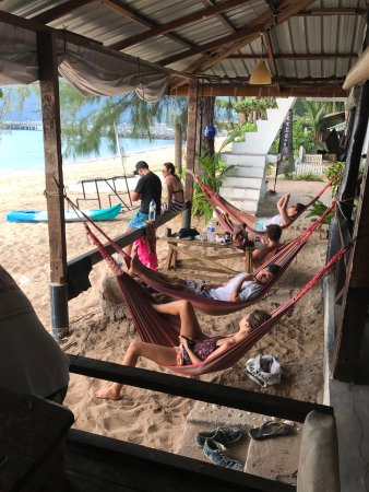 Tekek, Malaysia: Chilling on beach hammock at the bistro