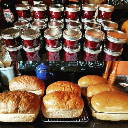 Bonavista, Canada: Freshly made bread and preserves for our tours
