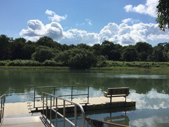 Seneca Falls, NY: photo2.jpg