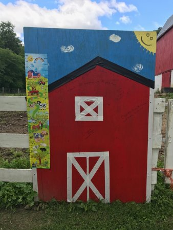Cashton, WI: Tell us where you are from as you visit Papa's farm!