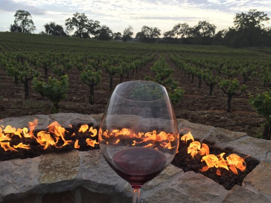 Plymouth, Californien: Sunset with Wilderotter Wine
