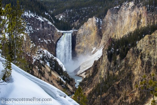Wild Wyoming Tours Lower Falls Of The Yellowstone River Opening Week