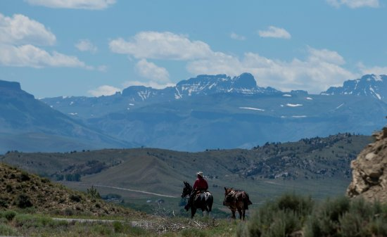Meeteetse, WY: Photo taken a five minute walk from the house, it is beautiful here, you gotta come and see it!
