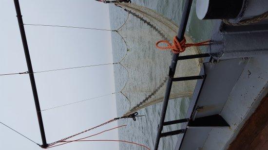 West-Terschelling, The Netherlands: Sleepnetvissen en zeehondentochten TS3-Viking