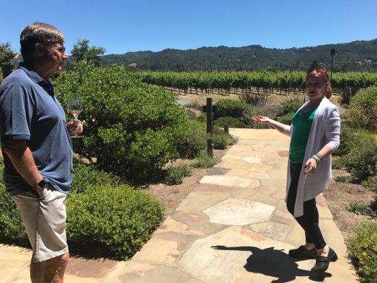 Glen Ellen, Калифорния: The vineyard tour
