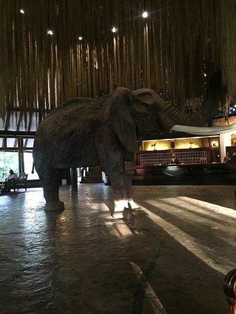 Safari Park Hotel: photo0.jpg