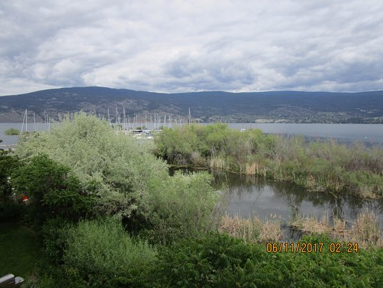 Summerland, Canada: Wetlands, lake, & mountain view from suite & balcony.