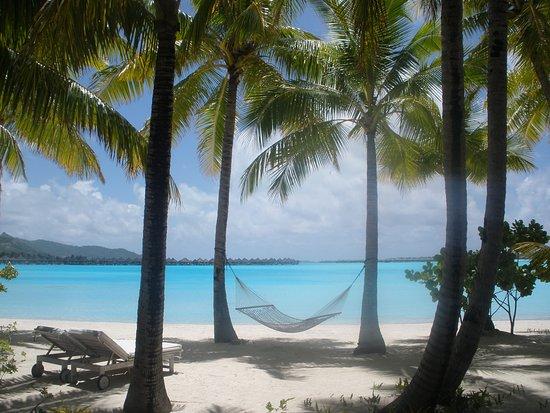 منتجع The St. Regis Bora Bora Resort: Vue du bungalow, juste devant la piscine privée