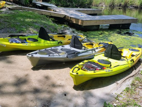 A few of our kayaks for rent in Homosassa
