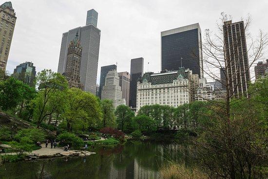 Central Park Food Tours