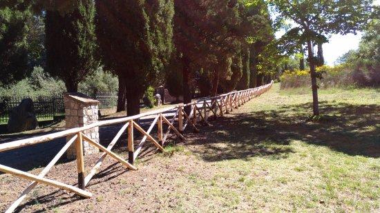 Amelia, Italy: L'ingresso