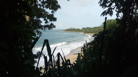 Punta Uva, Costa Rica: A glance of the beach from the track to the hanging rock