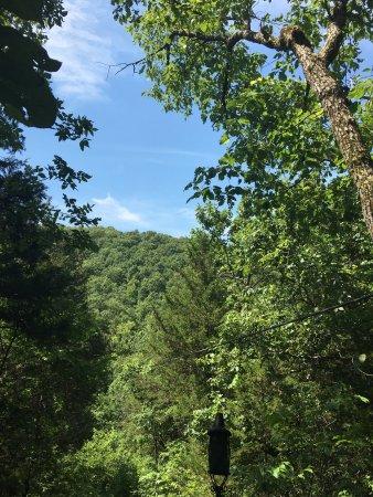 Reeds Spring, MO: photo0.jpg