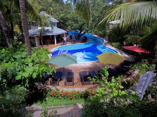 Flowing swimming pool and view of our luscious tropical gardens ...