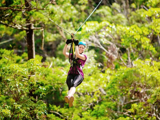 Gold Coast, Australia: Huge Ziplines, Stunning Scenery, Massive Heights!