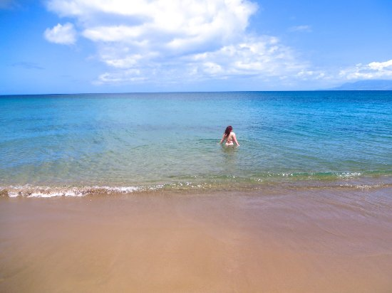 Montpelier Plantation & Beach: The hotel's private beach is very swim friendly. Look how calm the water is! | The Rose Table