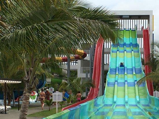 splash water park picture of hotel riu palace bavaro punta cana rh tripadvisor co nz