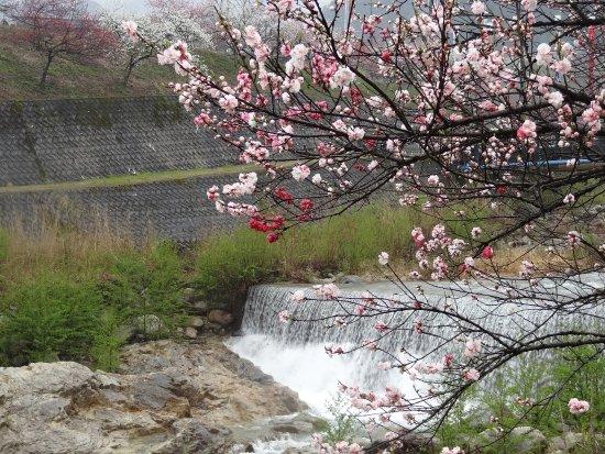 Bilde fra Achi-mura
