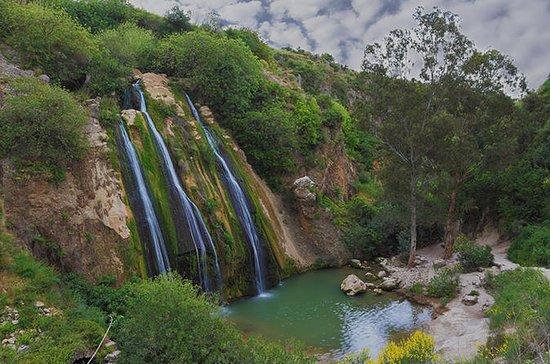 KEDEM Premium Off-Road North Golan ...