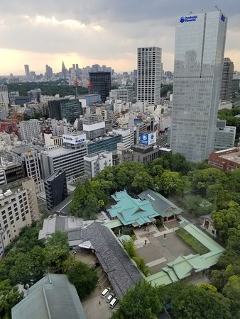 The Capitol Hotel Tokyu: View from 27th floor room over Hie Shrine