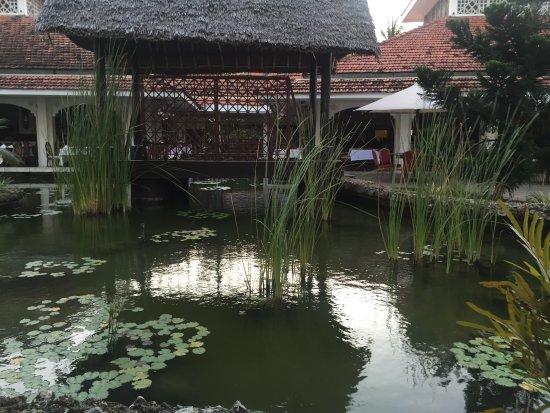 Pavilions Restaurant: 外面景色
