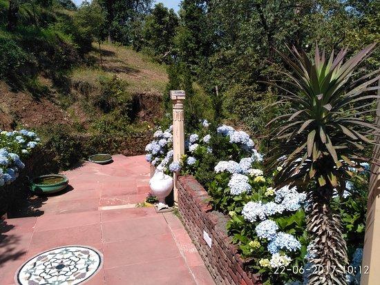 Dhanachuli, อินเดีย: Outdoors at Te Aroha