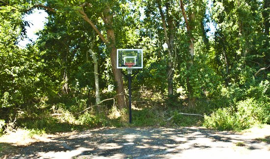 Easterner Motel: Basketball, anyone?