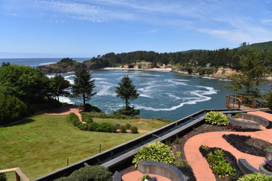 Whale Cove Inn: The captivating view from room 104.