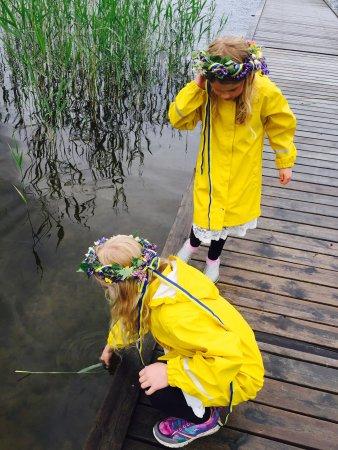 Arjang, Szwecja: photo0.jpg