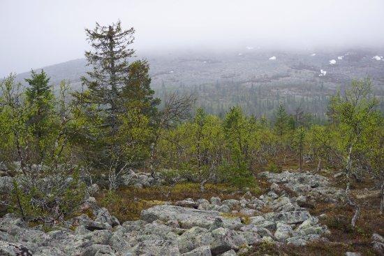 Ruijanpolku Trail