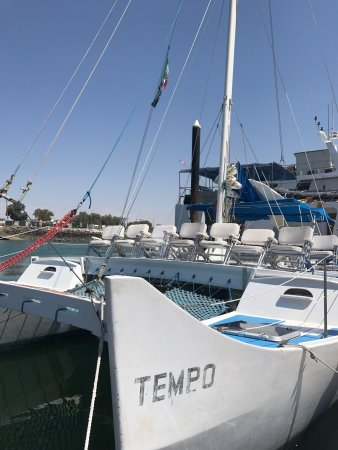Del mar charters puerto penasco mexico top tips before for Puerto penasco fishing