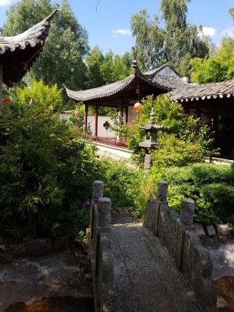 Nenuphar Picture Of Jardin Chinois De Yili Rambouillet Tripadvisor