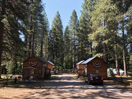 Shingletown, CA: Four of the camping cabins.