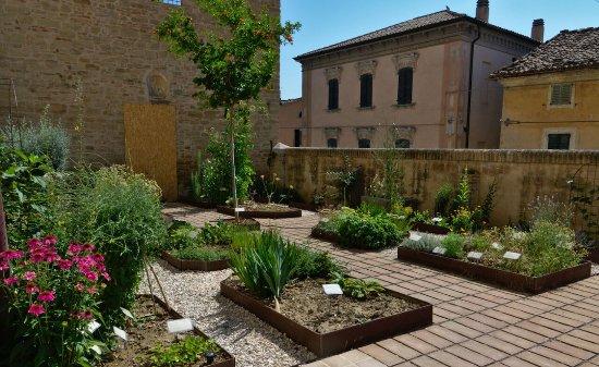 Cupramontana, Italia: L'Horto de i Semplici, con le piante benefiche per l'organismo