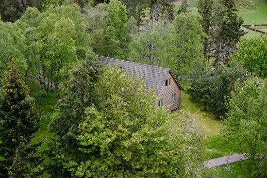 Luxury Woodland Lodges at Macdonald Aviemore Resort: Luxury Wooden Lodge exterior - Macdonald Aviemore Resort