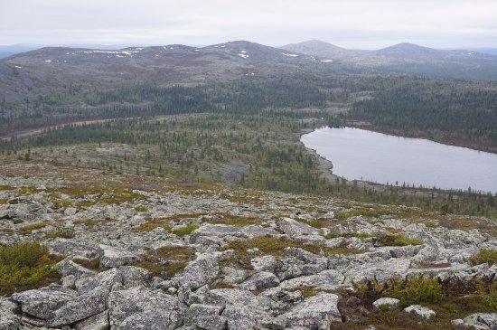 Sodankyla, Finlandia: A view from Pyhä-Nattanen Fell