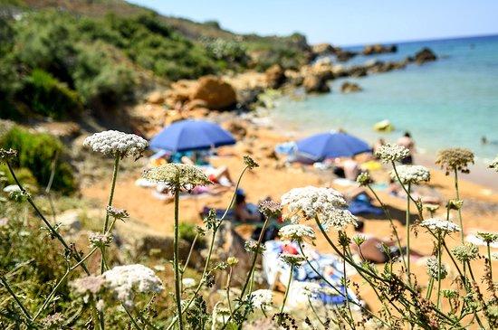 Munxar, Malta: Enjoy the beautiful beaches scattered around the island