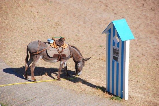 Best Western Hotel De La Plage: Au pied de l'hôtel un moyen de transport plus facile pour se stationner