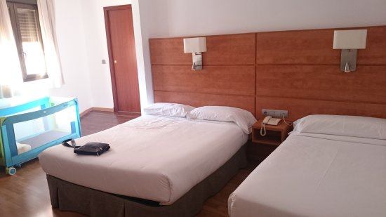 阿維尼達酒店照片