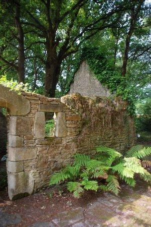 Herbignac, Prancis: Le jardin des fougères