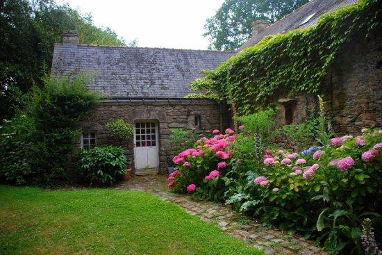 Herbignac, Prancis: Les hortensias à l'arrière de la maison