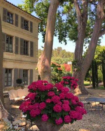 Boulbon, Frankrig: hotel and garden