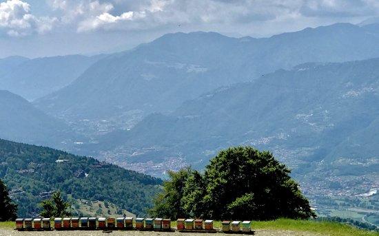 Artogne, Italien: photo1.jpg