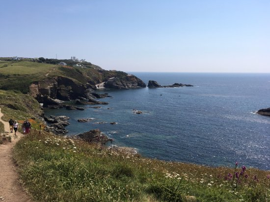 The Lizard Peninsula in June.