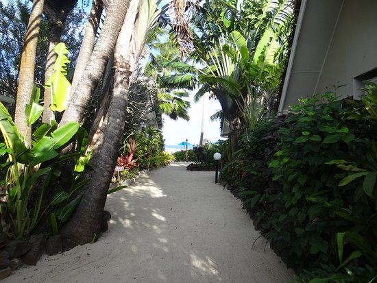 Manuia Beach Resort : The view as you walk down to the pool/beach/restuarant