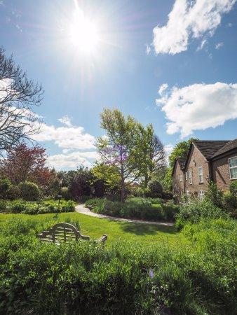 Millstream Hotel & Restaurant: Resident's garden