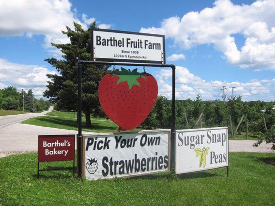 Barthel Fruit Farm