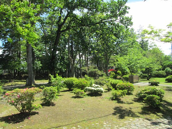 Iwate Park (Koen): 植栽と散策路