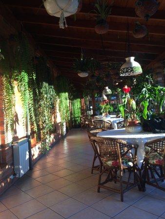 Hotel Azaléia: Área do café da manhã